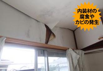 内装材の腐食やカビの発生