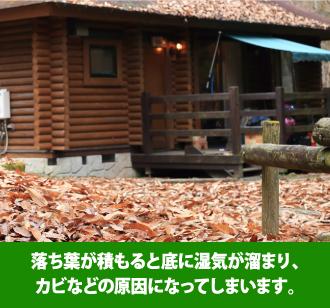 落ち葉が積もると底に湿気が溜まり、カビなどの原因になってしまいます