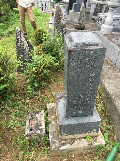 墓地の雑草②
