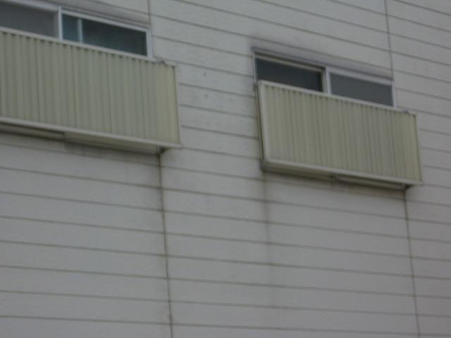 窓の目隠し
