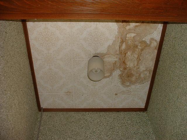 女子トイレの天井