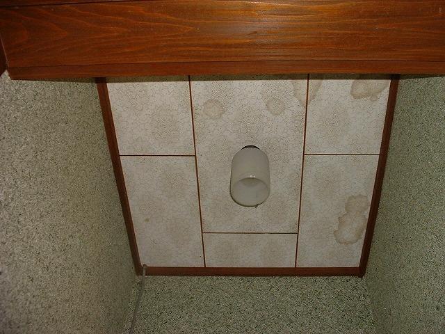 男子トイレの天井