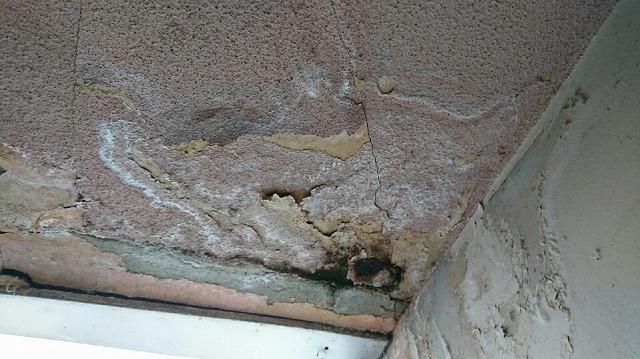 天井からの雨漏り