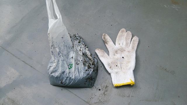 除去したゴミ