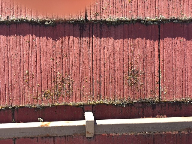 コロニアル屋根汚れ