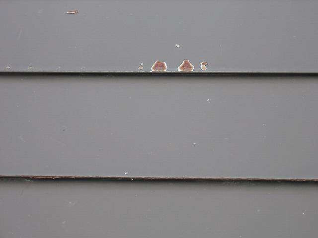屋根の錆びの様子