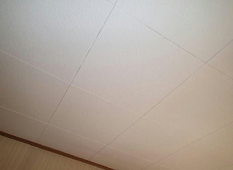 綺麗な天井の写真2