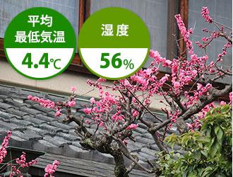 3月は平均最低気温4.4℃ 湿度56%